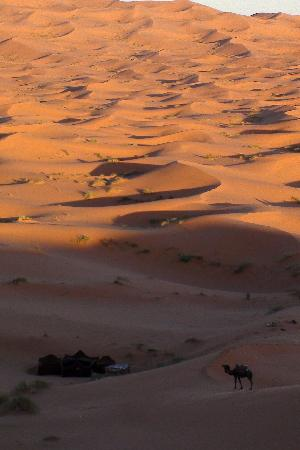 Kasbah Sable D'or: Endless Dunes
