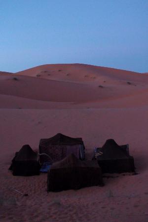 Kasbah Sable D'or : Saharan Camp