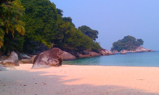 Salang Sayang Resort : The water is crystal and the fish are amazing