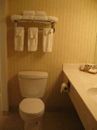 BEST WESTERN PLUS Meridian Hotel: Bathroom