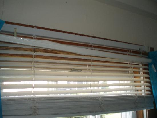 Narragansett Inn: Scotch taped curtain rods