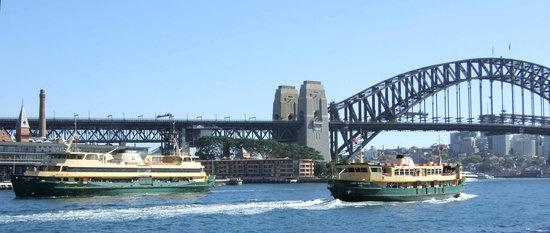 Sydney Ferries : Ferries near Circular Quay