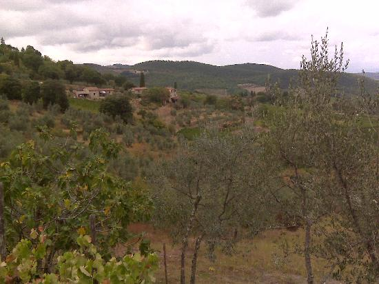 Villa Sangiovese: View from our room