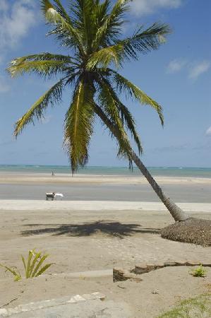 Pousada do Sonho: the front beach