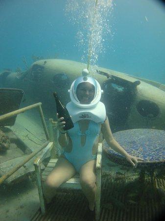 De Palm Tours: Sea Trek!