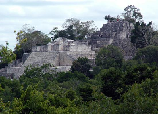 Rio Bec Dreams: Structure II at Calakmul, largest Mayan pyramid found so far. Calakmul has yielded tremendous tr