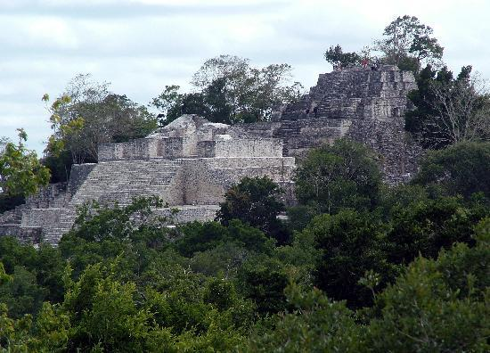 Calakmul Archaeological Zone : Calakmul's main pyramid, so large that the only way to see the whole thing is from top of anothe