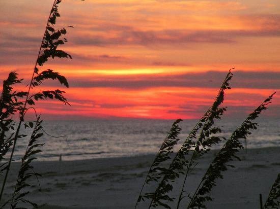 Grayton Beach, FL: beautiful sunsets