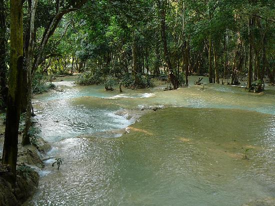 Tad Sae Waterfall: 滝 その1