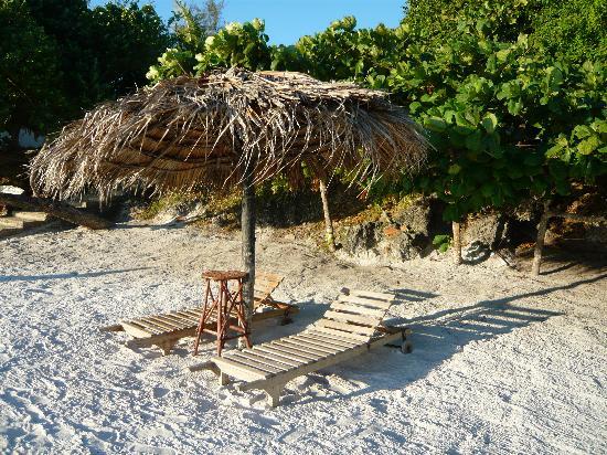 The Manta Resort: the beach chairs