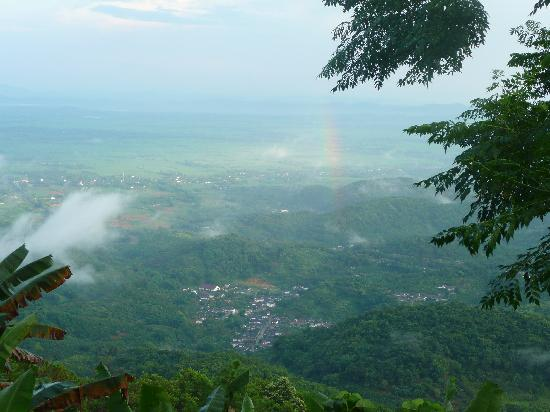 DoiTung Lodge: Great view from Doi Tung Lodge