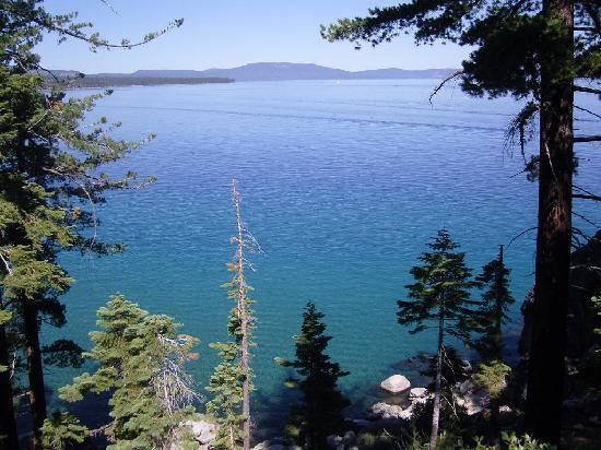 Tahoe Photographic Tours: Lake and trees