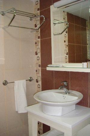 The Q-Inn Hotel Istanbul: Toilet Sink