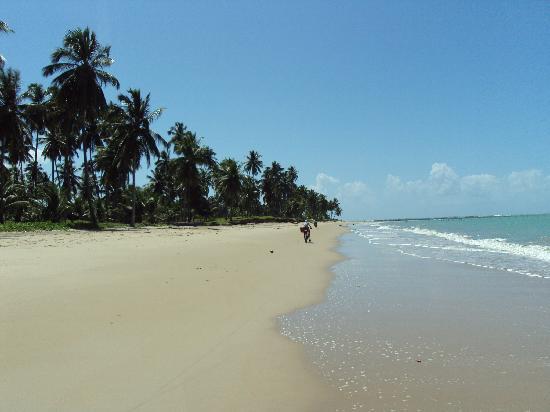 Salinas de Maceio Beach Resort: praia Ipióca