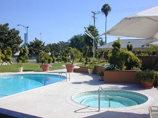 Best Western Plus Stovall's Inn: partie de la piscine et spa