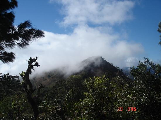 Hotel & Restaurant Guancascos: The Cloud Forest in Celaque National Park