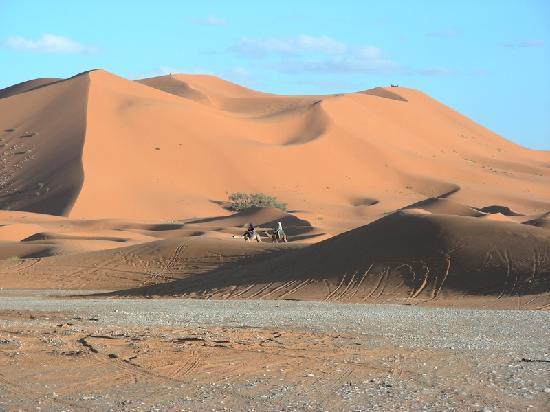 L'Auberge Oasis: Cette image restera gravée en vous