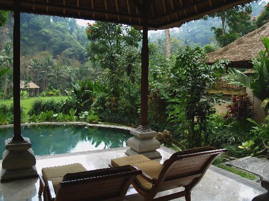 The Royal Pita Maha: View from the river bank villa...