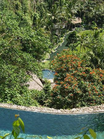 The Royal Pita Maha: Hill side villa - view from the pool...