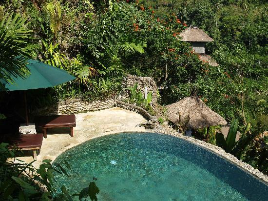 The Royal Pita Maha: Hill side villa pool...
