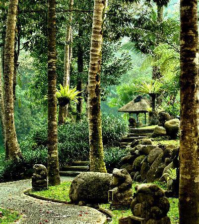 The Royal Pita Maha: Hotel's area...