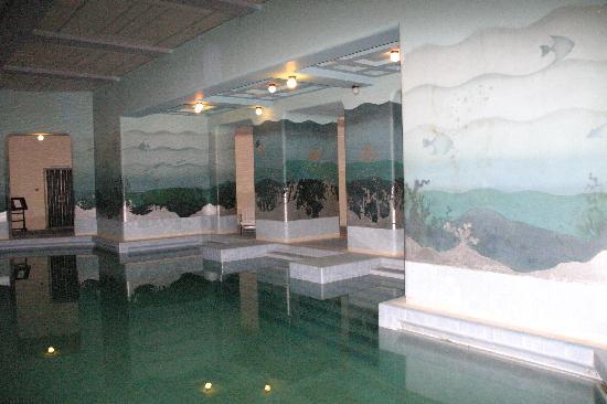 Umaid Bhawan Palace Jodhpur: Internal pool
