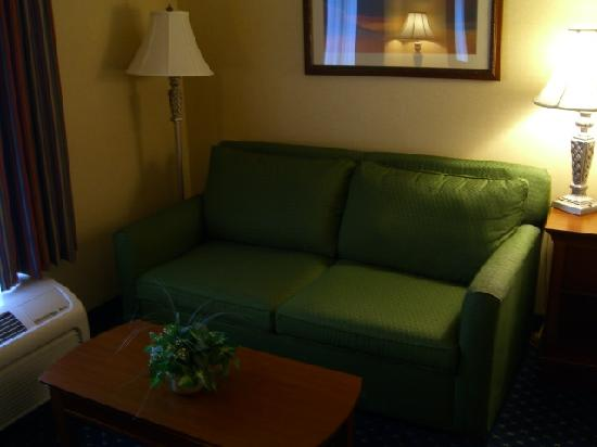 Hampton Inn & Suites Fredericksburg South: Sofa