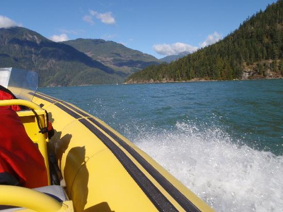 Sonora Resort: On a zodiac ecotour