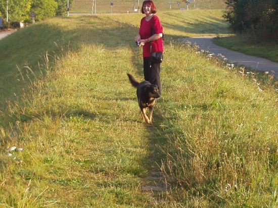 Altes Fährhaus: mit dem Hund morgenlichen Spaziergang