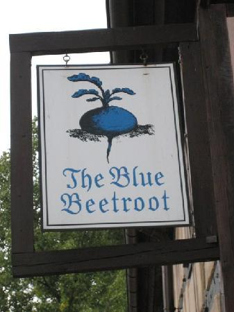 The Blue Beetroot Hotel: The Blue Beetroot