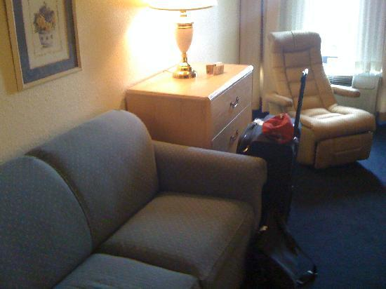 Suburban Extended Stay Hotel: Sofa