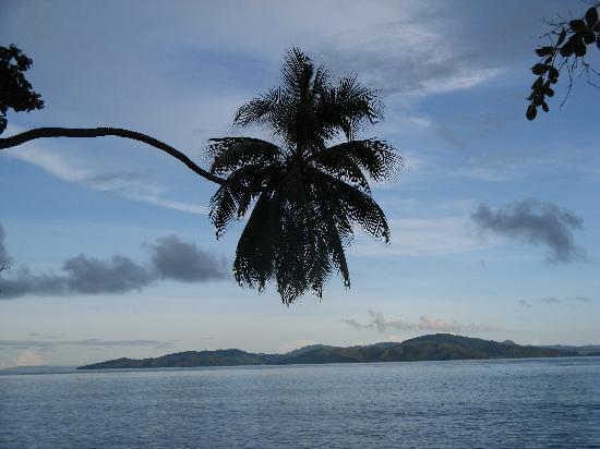 Garden Island Resort: View from my room