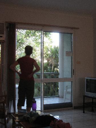 Citysider Holiday Apartments: Enjoying the bird life right off the balcony.