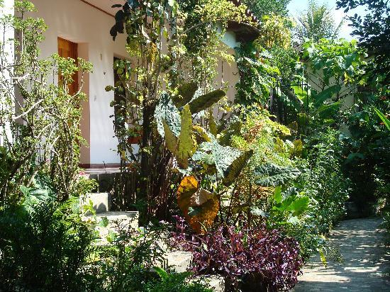 Hotel & Restaurant Guancascos: Hidden in the garden