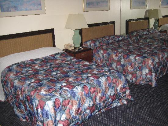 Rodeway Inn Meadowlands: Room 307