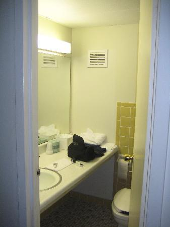 Rodeway Inn Meadowlands: Bathroom Room 307