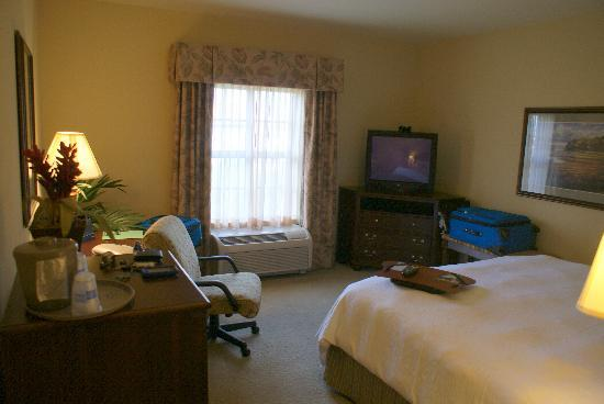 Hampton Inn & Suites Savannah Historic District: King Room