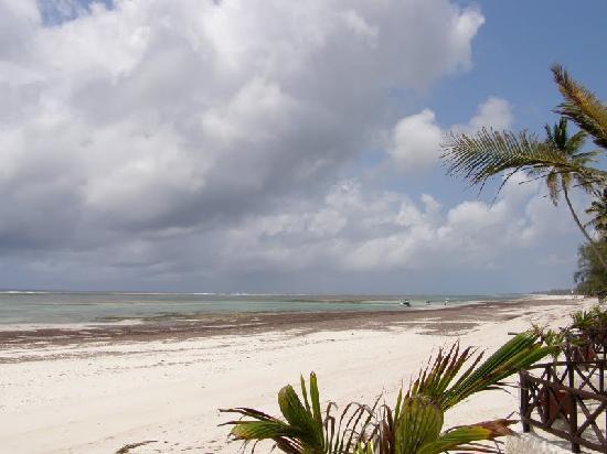 Diani Blue: Vue depuis la plage privee