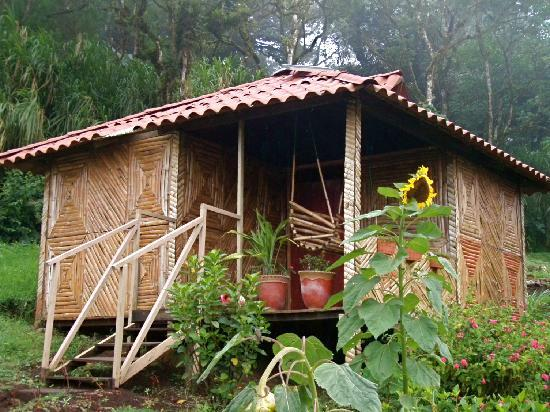 Finca Neblina del Bosque: confortable eco-cabins