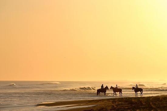 Playas amplias y virgenes al sur de Miramar