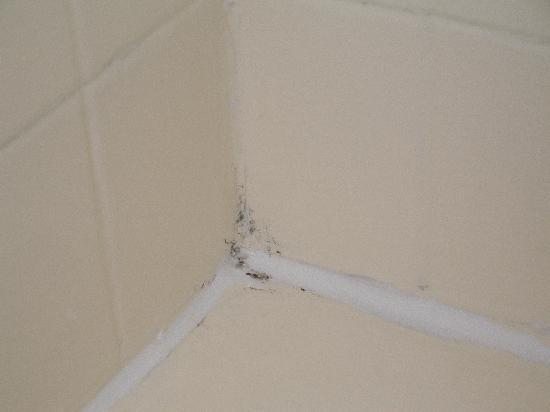 Port Hawkesbury, แคนาดา: Mold at corners of tub/shower