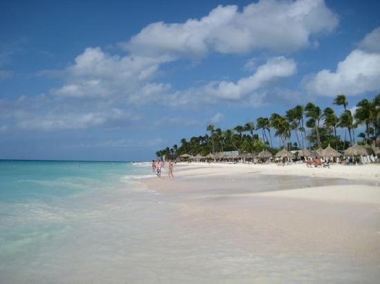 Tamarijn pool picture of divi aruba all inclusive - Divi beach aruba ...