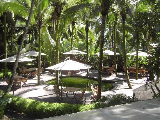 Cocles, Costa Rica: la terrasse du numu bar, vue du restaurant