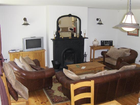 Castle Leslie Estate : Living room