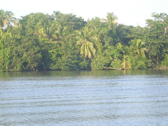 Ilan-Ilan Caribbean Lodge: entorno