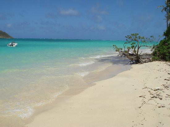 The Amazing Lanikai Beach Picture Of