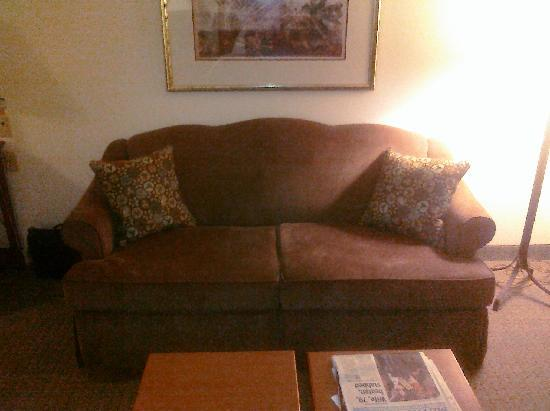 Staybridge Suites San Antonio NW Medical Center: Sofa bed