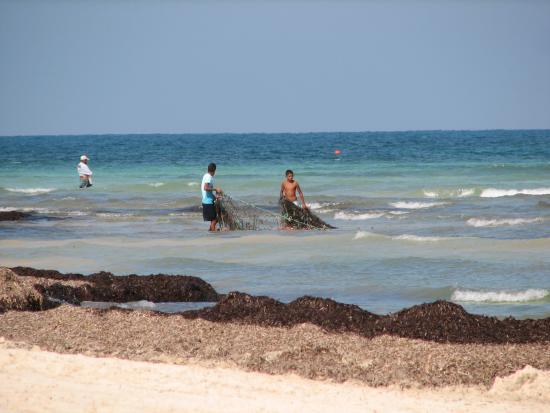 отели на острове джерба: