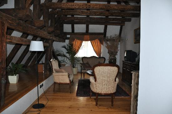 Hotel Residence Retezova: Living room