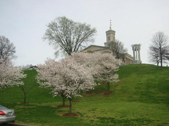 Tennessee State Capitol: 州議会堂と桜